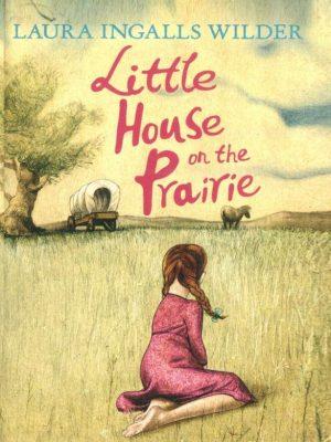 Little House (3)