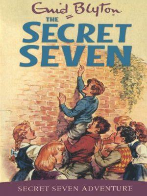 Secret Seven (3)